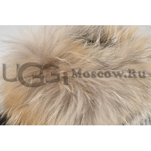 UGG Women With Fox Fur mini - Chestnut