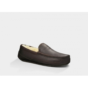 UGG Men Ascot Leather - Chocolate