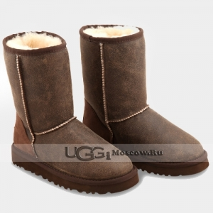 UGG Men Classic Short Bomber - Chocolate