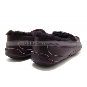 UGG Men Ascot Leather NEW - Chocolate